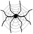 Pavouci a pavučiny