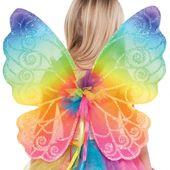 Kouzelné křídla rainbow