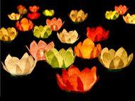 Plovoucí lampiony květiny