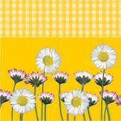 Ubrousky Daisy žluté