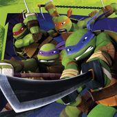 Ubrousky Ninja želvy