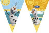 Vlaječky Olaf